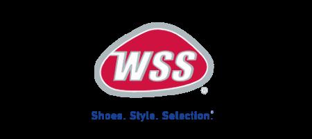 wss Custom Software Development Services