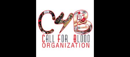 C4B Custom Software Development Services